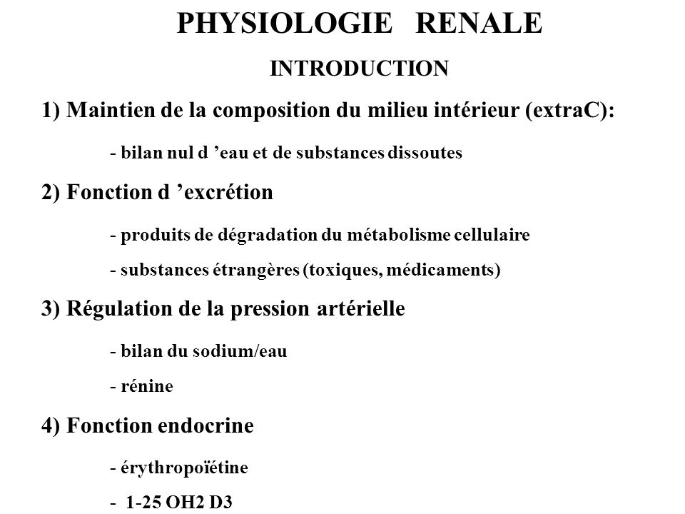 PHYSIOLOGIE RENALE INTRODUCTION