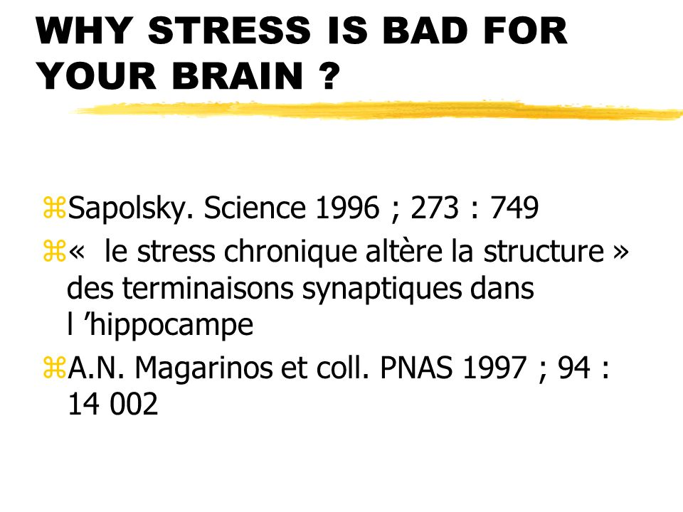 WHY STRESS IS BAD FOR YOUR BRAIN