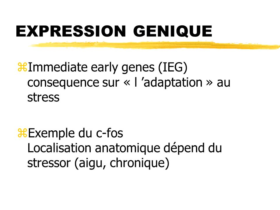 EXPRESSION GENIQUE Immediate early genes (IEG) consequence sur « l 'adaptation » au stress.
