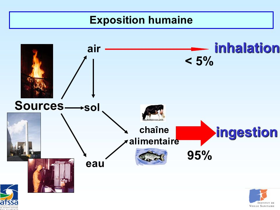 inhalation ingestion < 5% Sources 95% Exposition humaine air sol