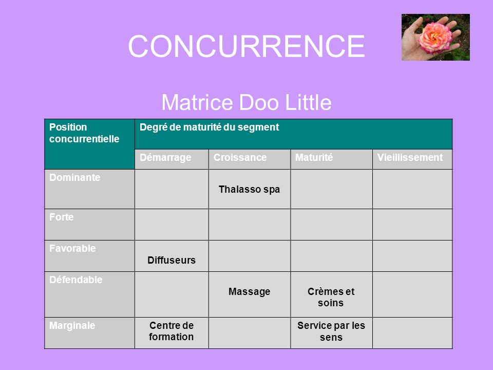 CONCURRENCE Matrice Doo Little Position concurrentielle