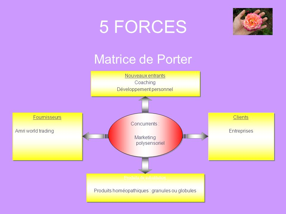 5 FORCES Matrice de Porter Concurrents : Marketing polysensoriel