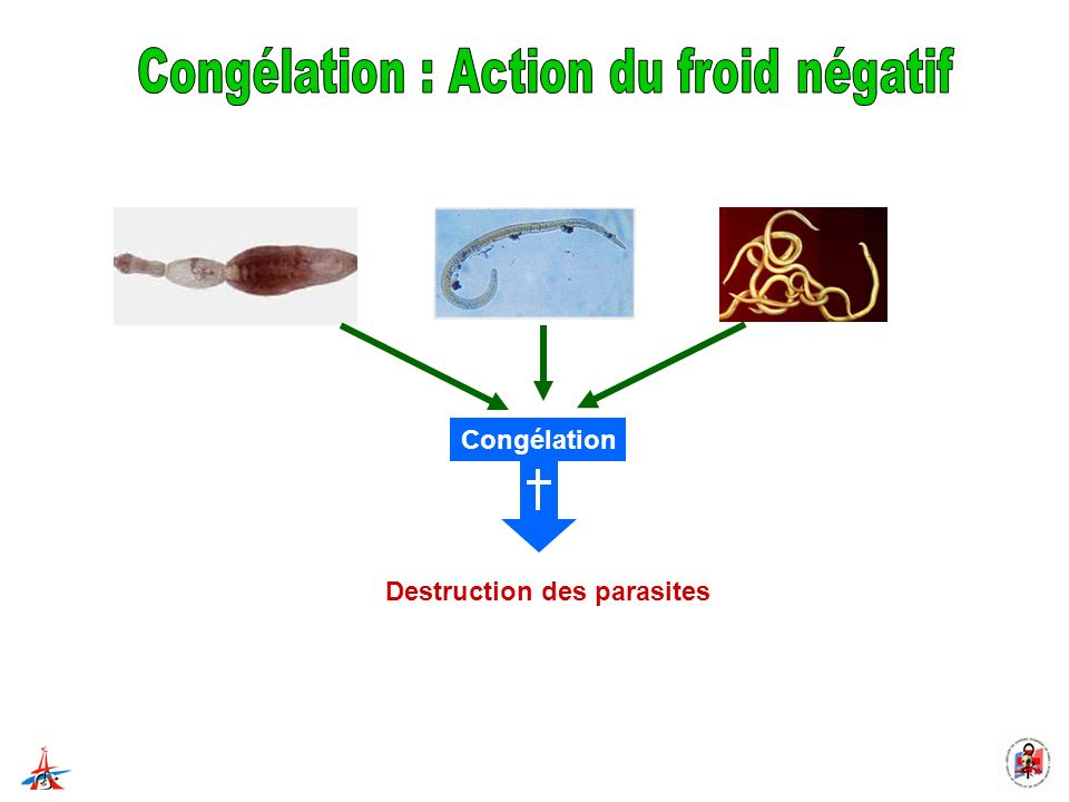 Destruction des parasites