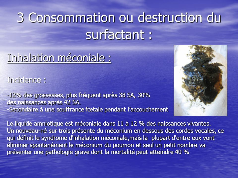 3 Consommation ou destruction du surfactant :