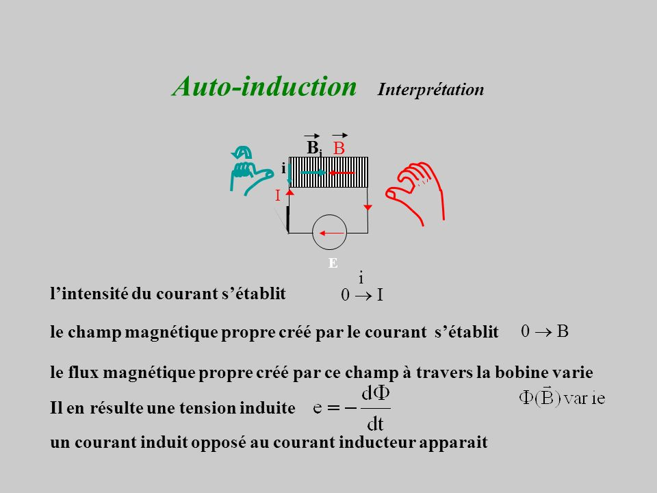Auto-induction Interprétation