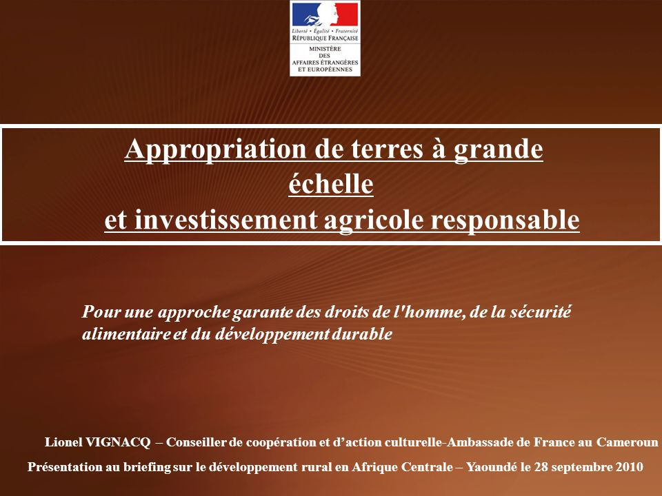 Appropriation de terres à grande échelle
