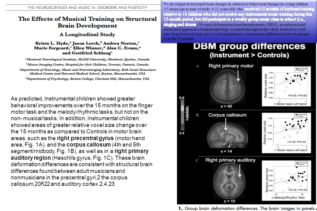 We investigated structural brain changes in relation to behavioral changes in young children (15 mean age at start of study: 6.32 years old) who received 15 months of keyboard training relative to 16 children who did not receive any instrumental music training during this 15-month period, but did participate in a weekly group music class in school (i.e., singing and drums). We used deformation-based morphometry (DBM), an unbiased and automated approach to brain morphology, to search throughout the whole brain on a voxel- wise basis for local brain size (voxel expansions or contractions) differences between groups over the 15 months