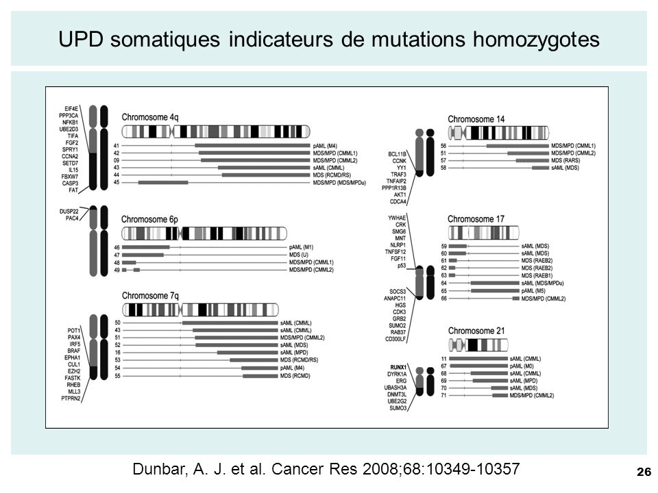 UPD somatiques indicateurs de mutations homozygotes