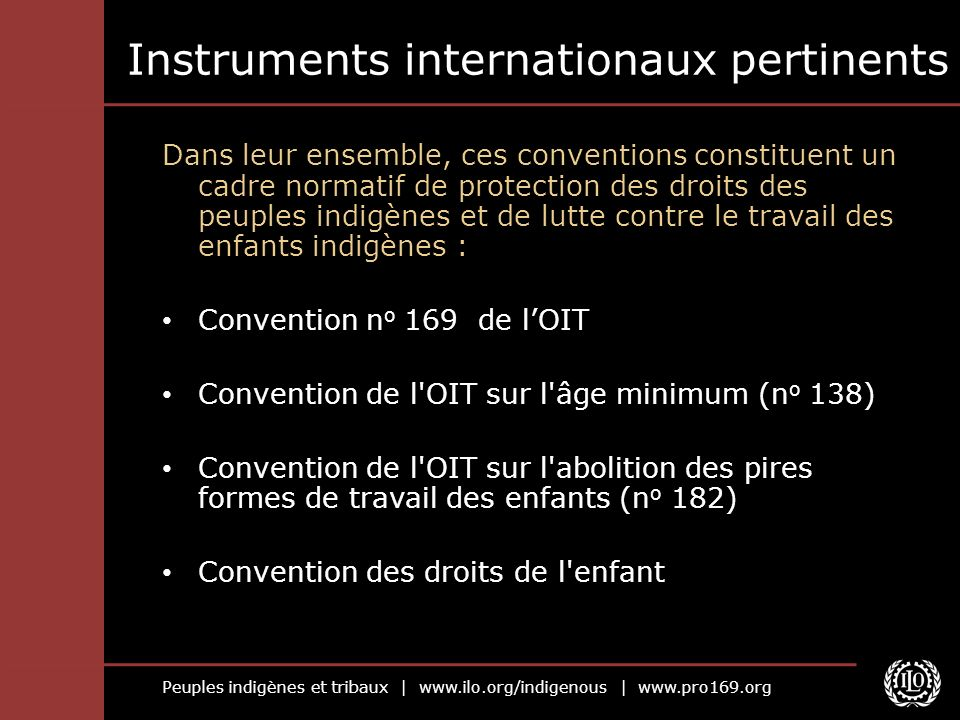 Instruments internationaux pertinents