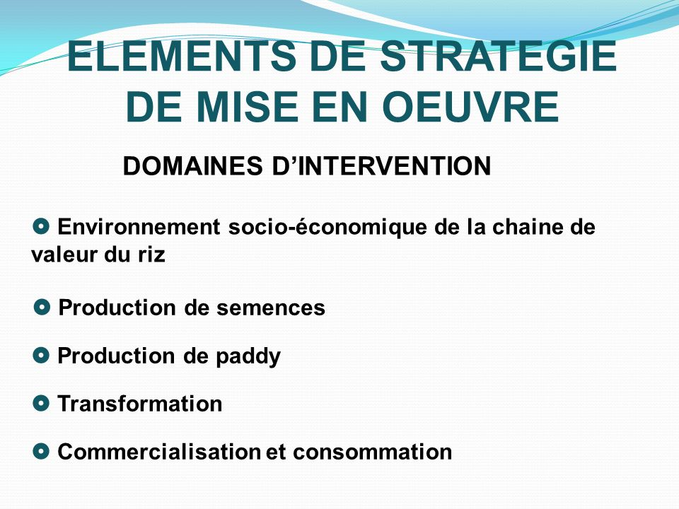 ELEMENTS DE STRATEGIE DE MISE EN OEUVRE