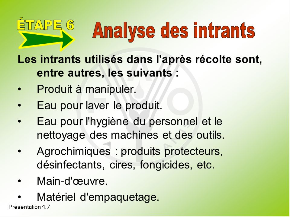 ÉTAPE 6 Analyse des intrants