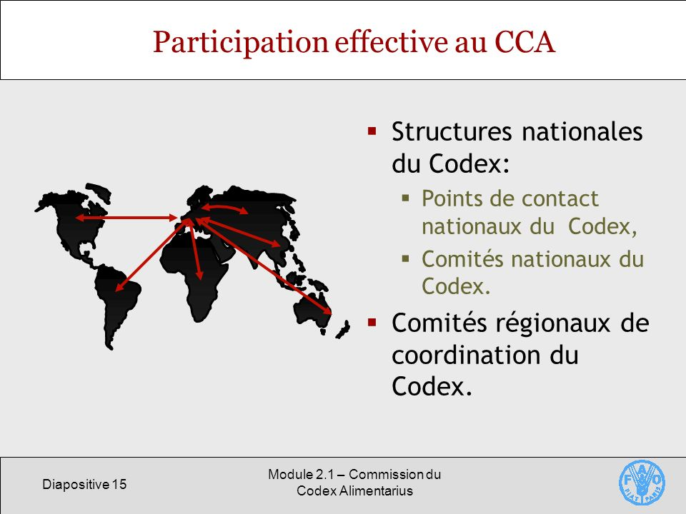 Participation effective au CCA