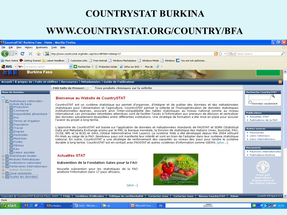 COUNTRYSTAT BURKINA
