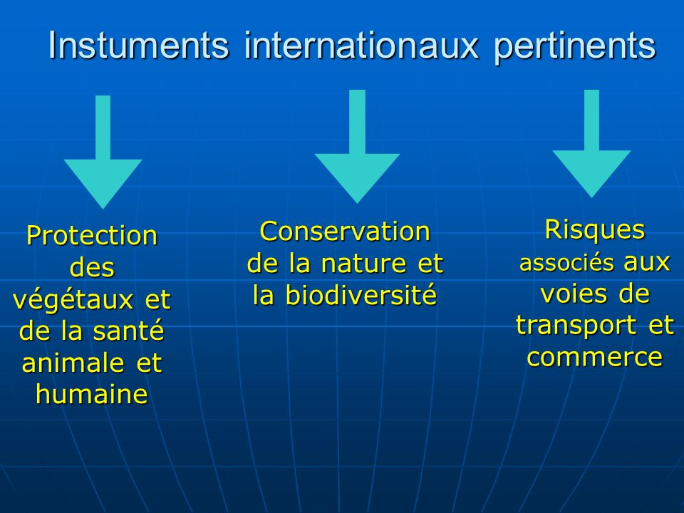 Instuments internationaux pertinents