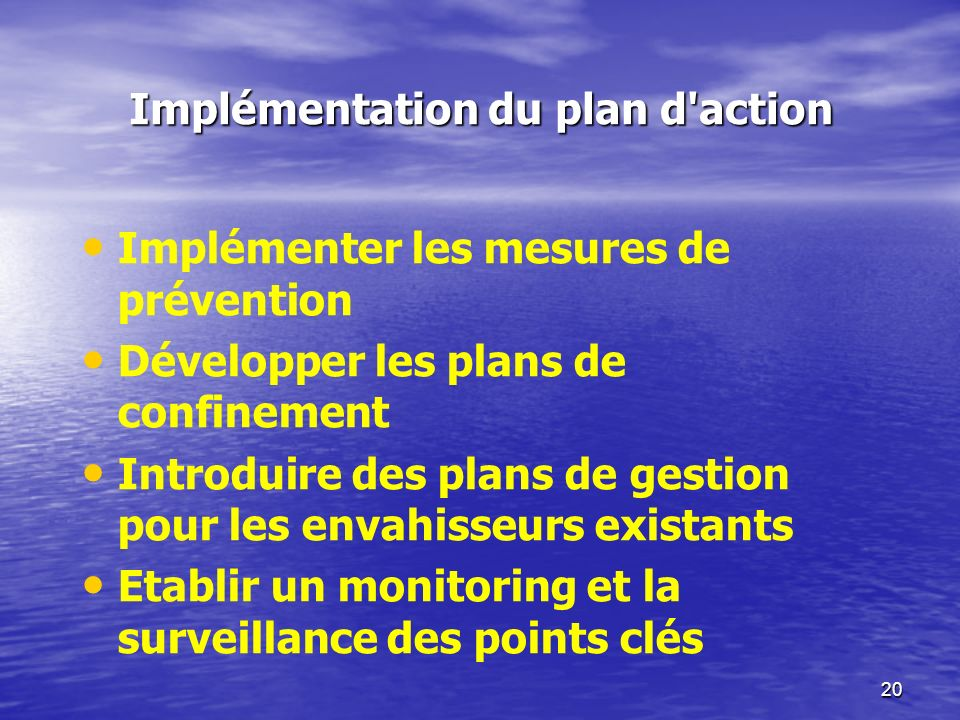 Implémentation du plan d action
