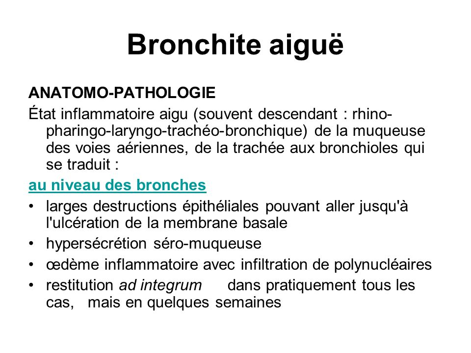 Bronchite aiguë ANATOMO-PATHOLOGIE