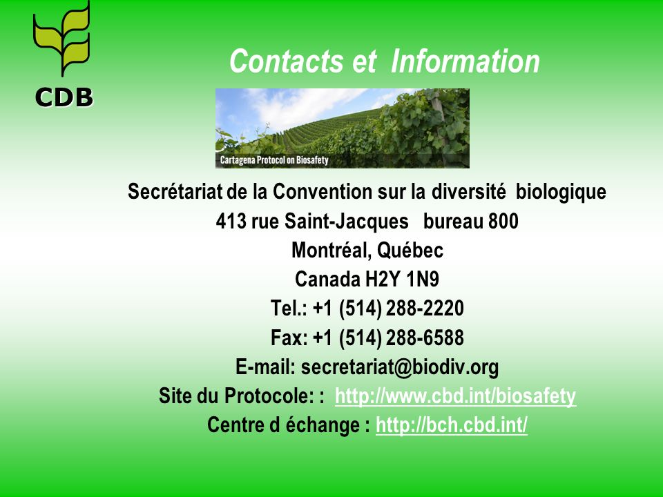 Contacts et Information
