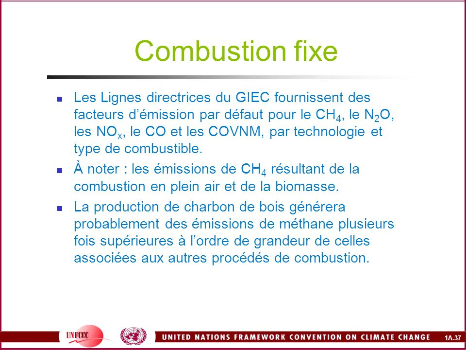 Combustion fixe