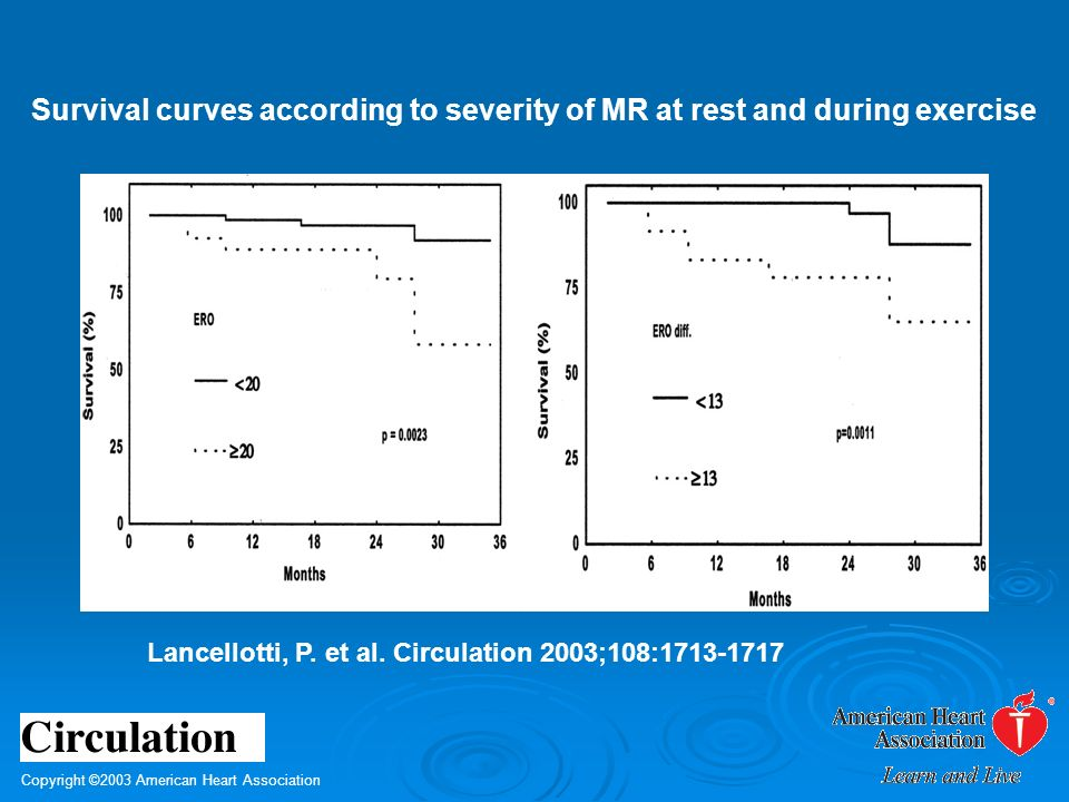 Survival curves according to severity of MR at rest and during exercise