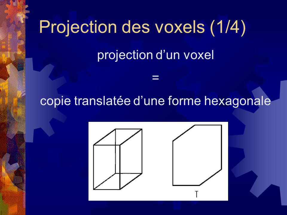 Projection des voxels (1/4)