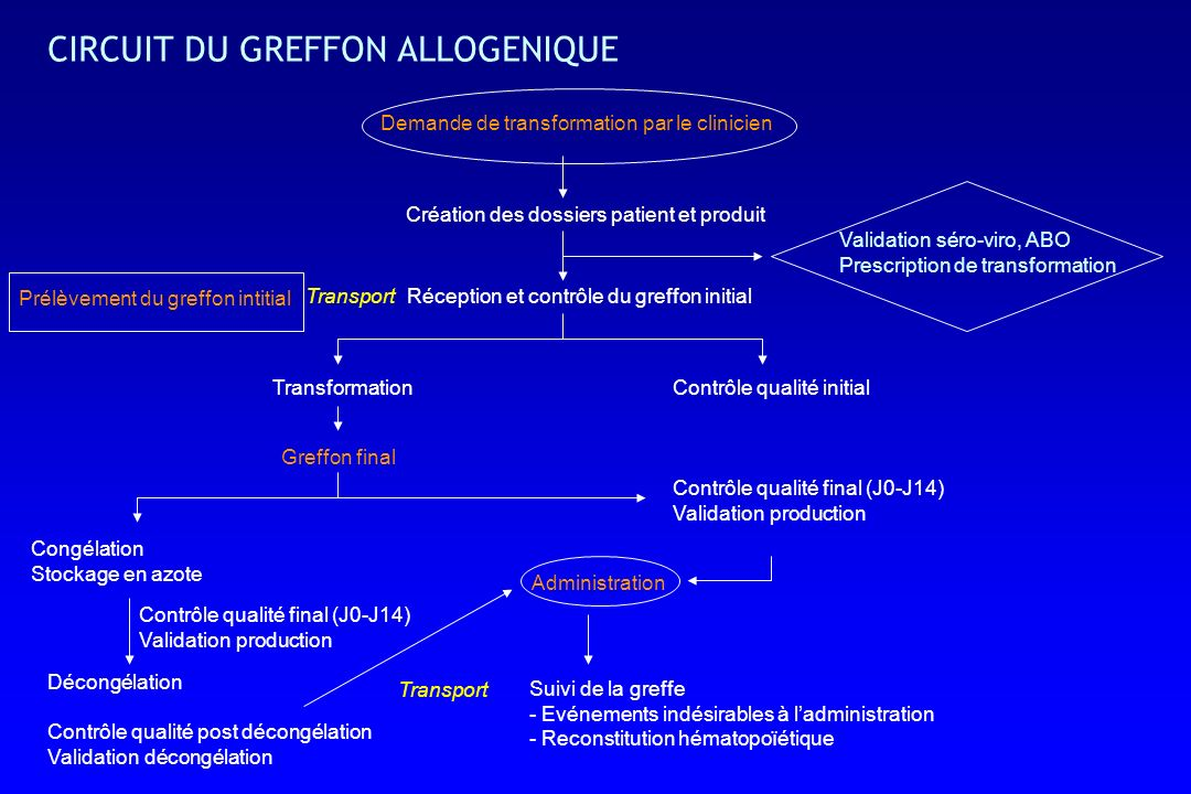 CIRCUIT DU GREFFON ALLOGENIQUE