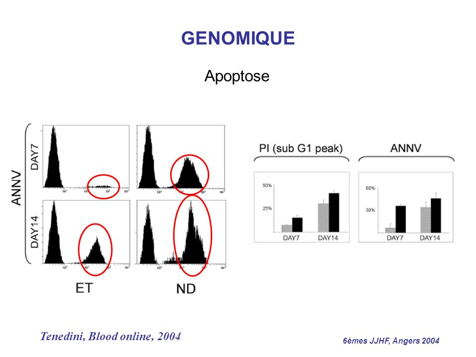 GENOMIQUE Apoptose Tenedini, Blood online, 2004