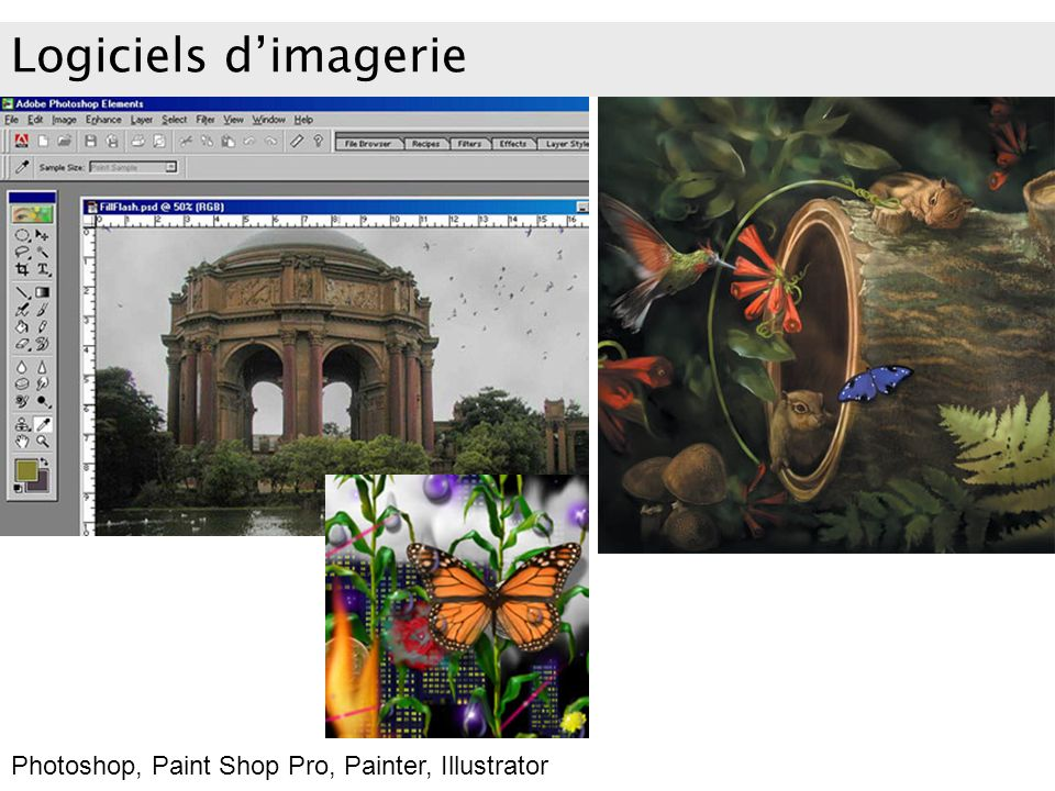 Logiciels d'imagerie Photoshop, Paint Shop Pro, Painter, Illustrator