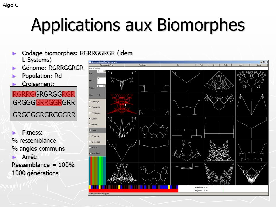 Applications aux Biomorphes