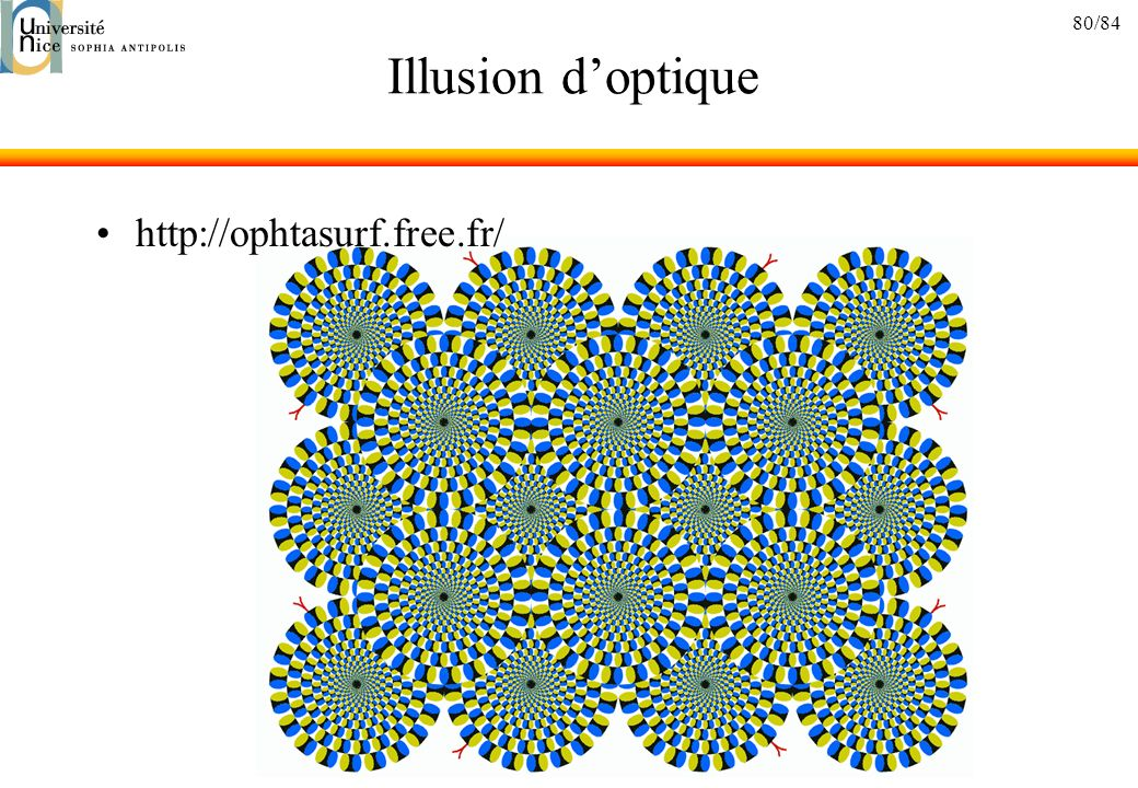 Illusion d'optique http://ophtasurf.free.fr/