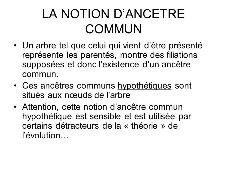 LA NOTION D'ANCETRE COMMUN