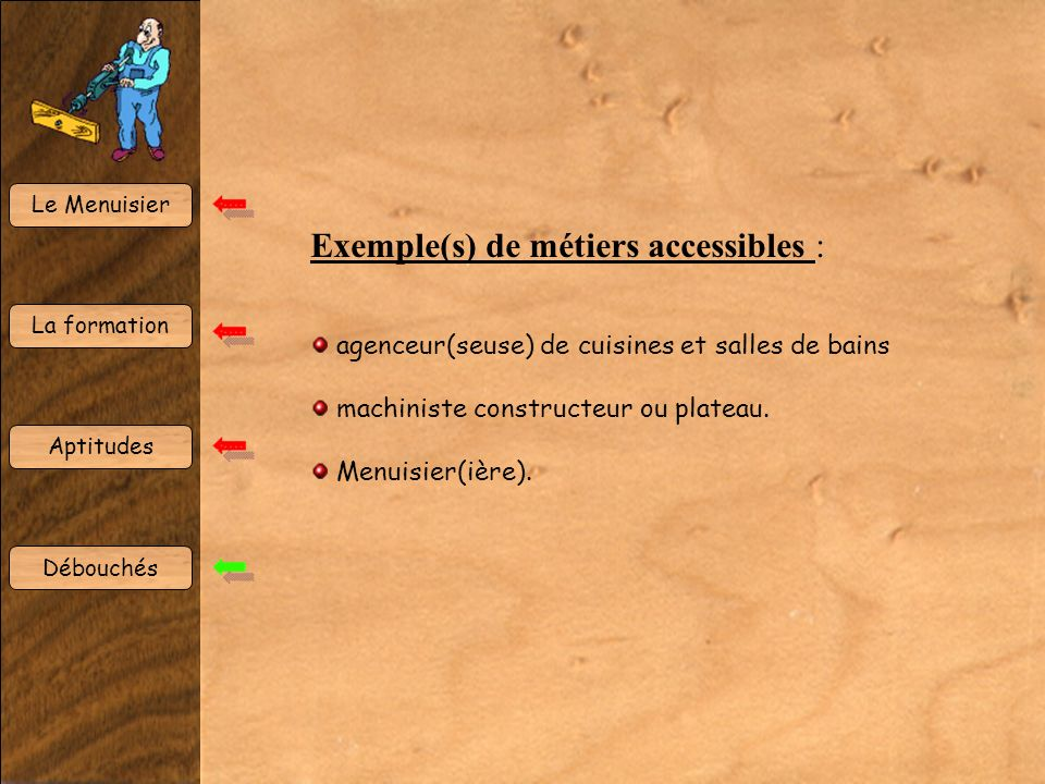 Exemple(s) de métiers accessibles :
