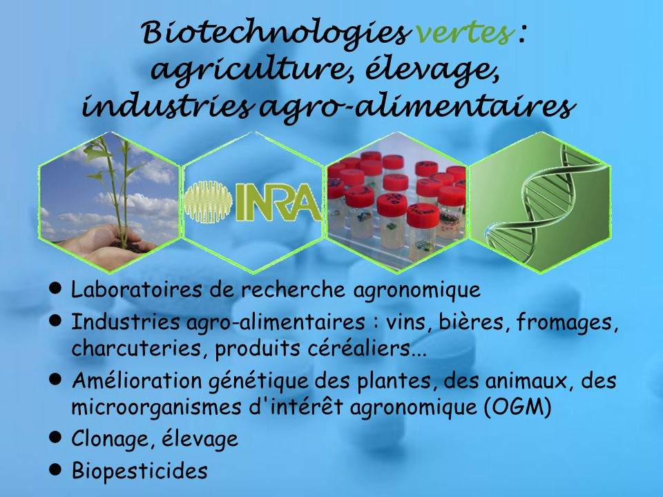 Biotechnologies vertes : agriculture, élevage, industries agro-alimentaires