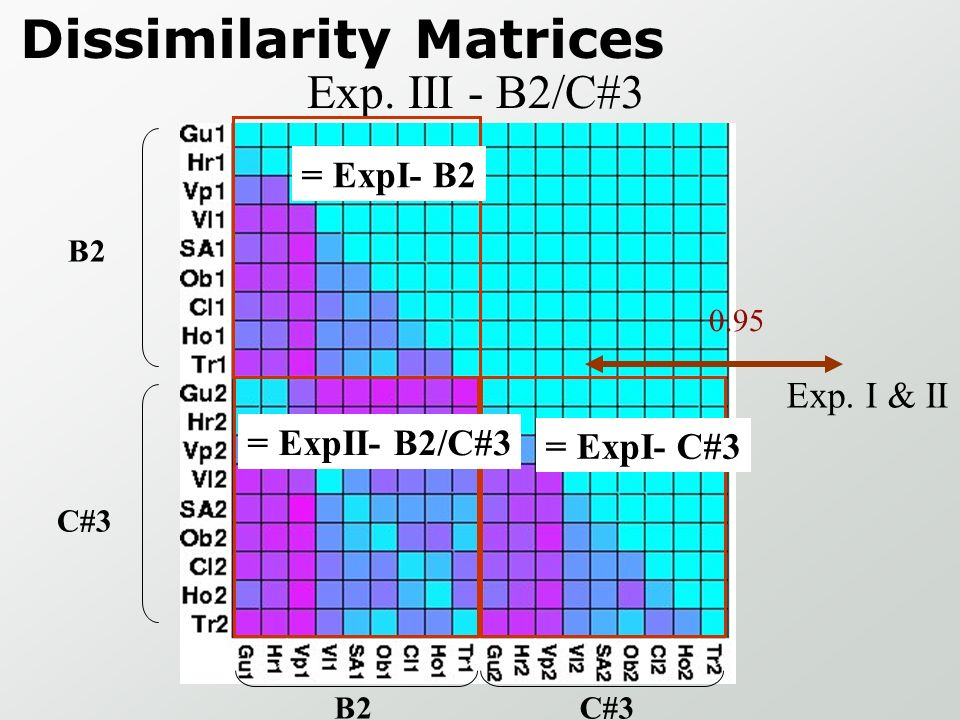 Dissimilarity Matrices