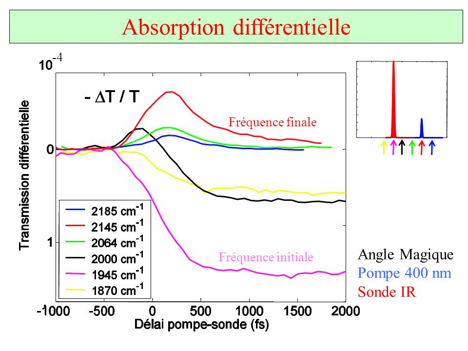 Absorption différentielle