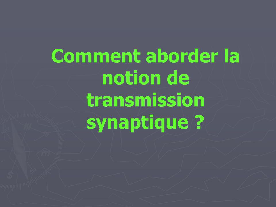 Comment aborder la notion de transmission synaptique