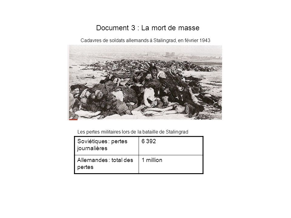 Document 3 : La mort de masse