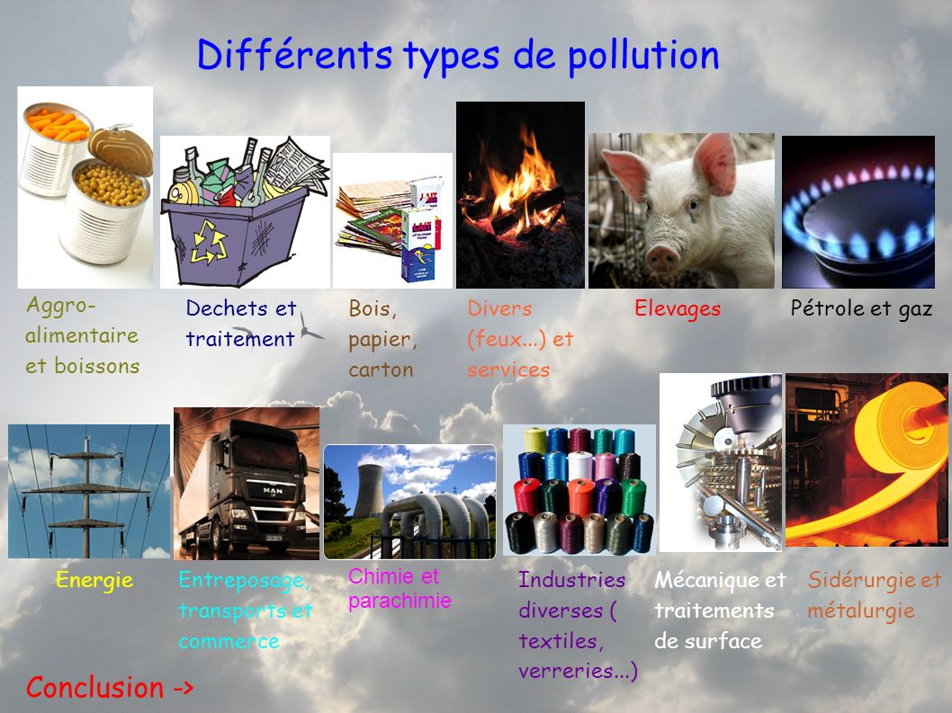 Différents types de pollution