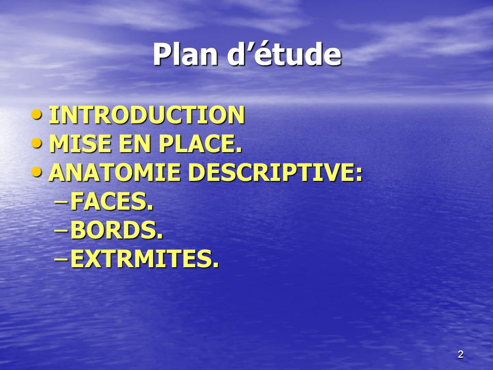 Plan d'étude INTRODUCTION MISE EN PLACE. ANATOMIE DESCRIPTIVE: FACES.