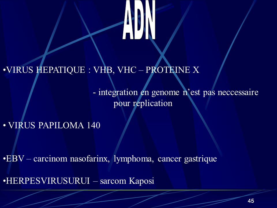 ADN VIRUS HEPATIQUE : VHB, VHC – PROTEINE X