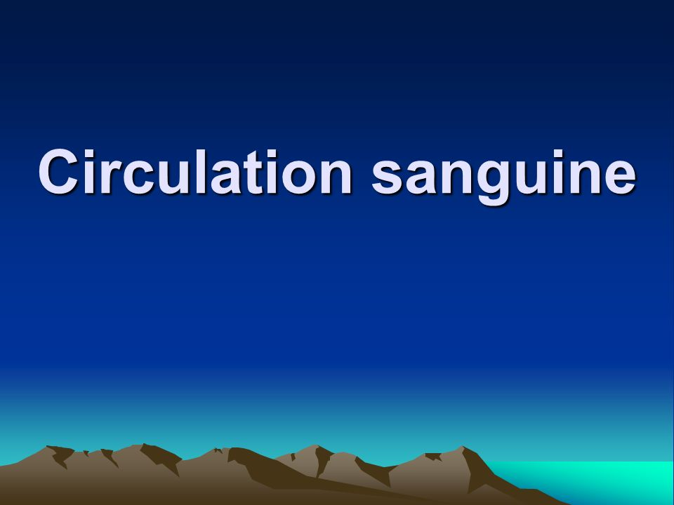 Circulation sanguine