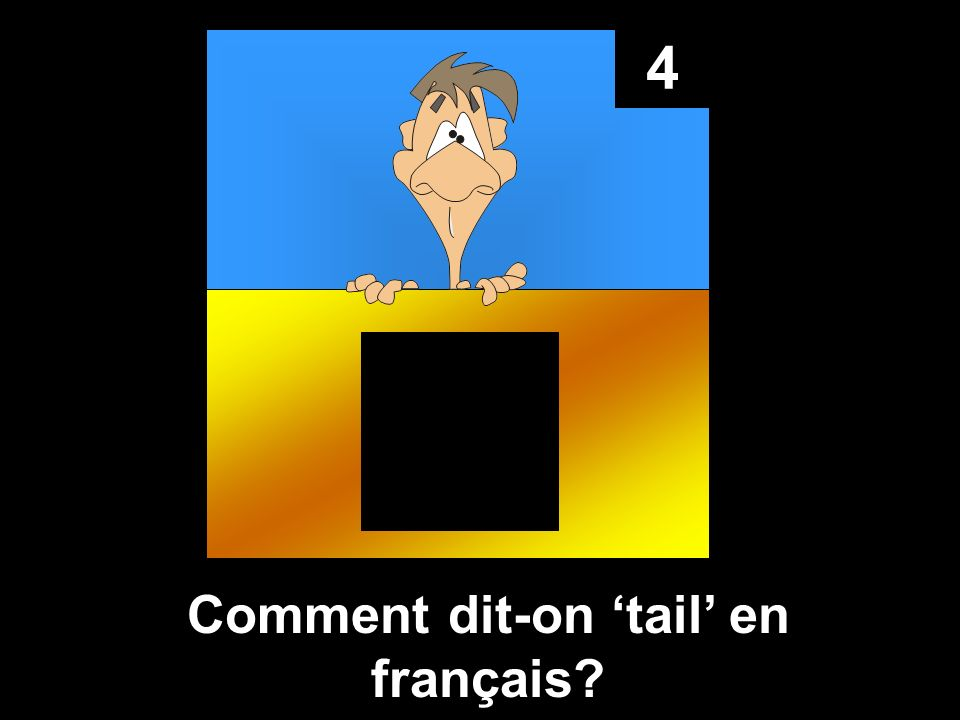 Comment dit-on 'tail' en français