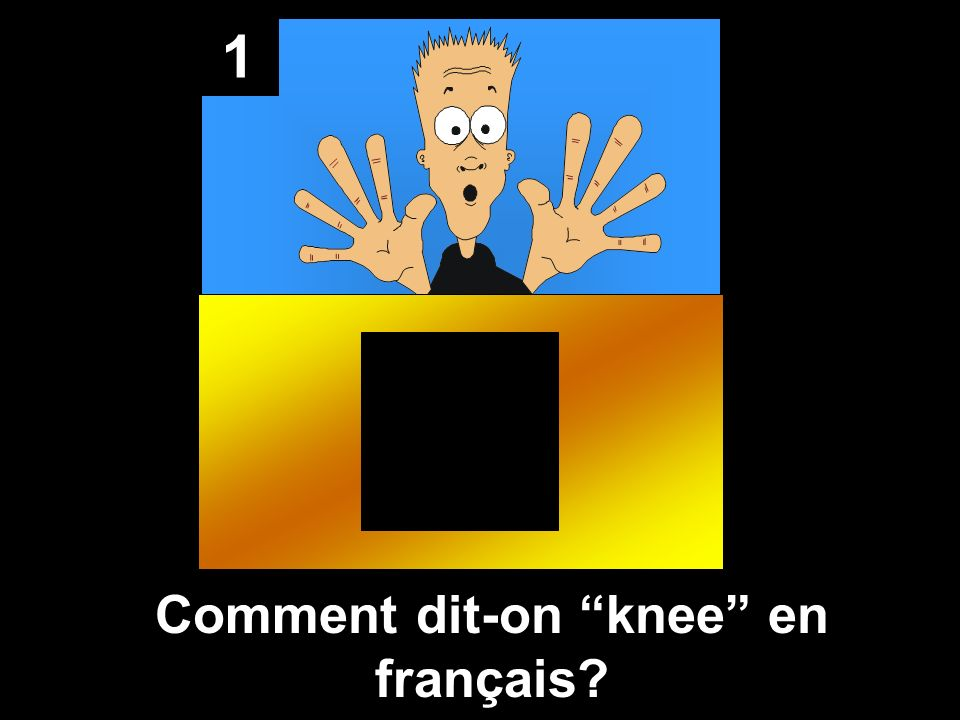 Comment dit-on knee en français