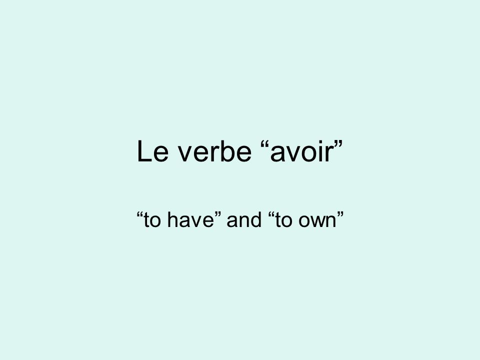 Le verbe avoir to have and to own