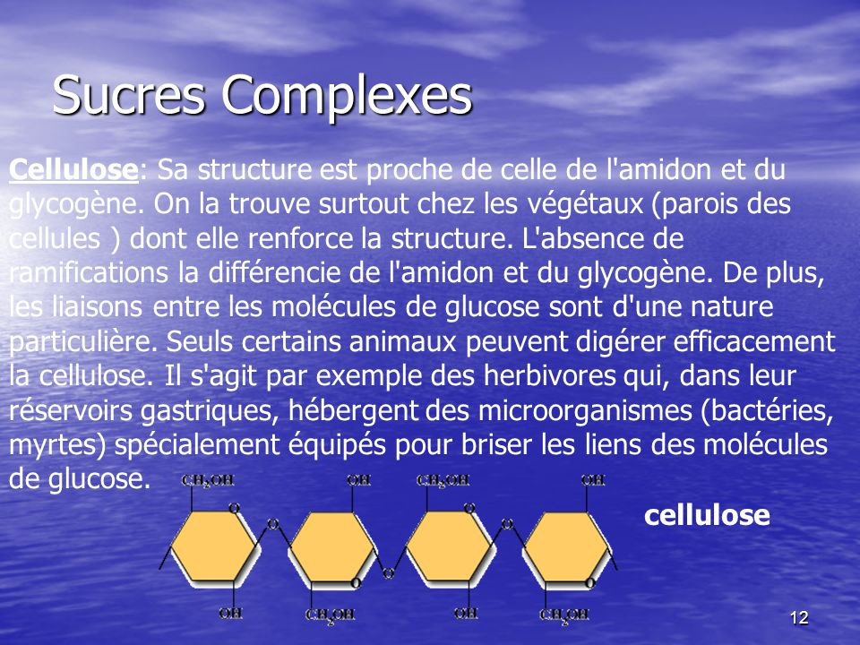 Sucres Complexes