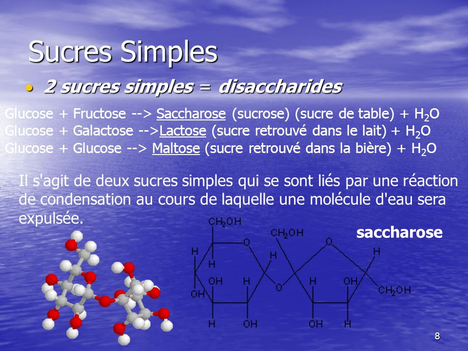 Sucres Simples 2 sucres simples = disaccharides