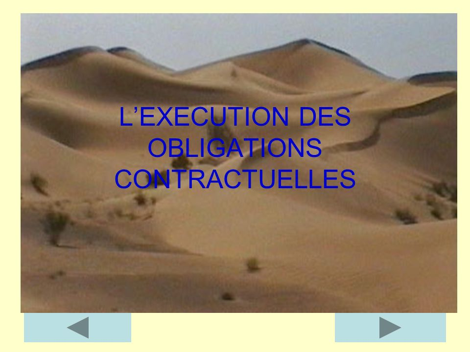 L'EXECUTION DES OBLIGATIONS CONTRACTUELLES