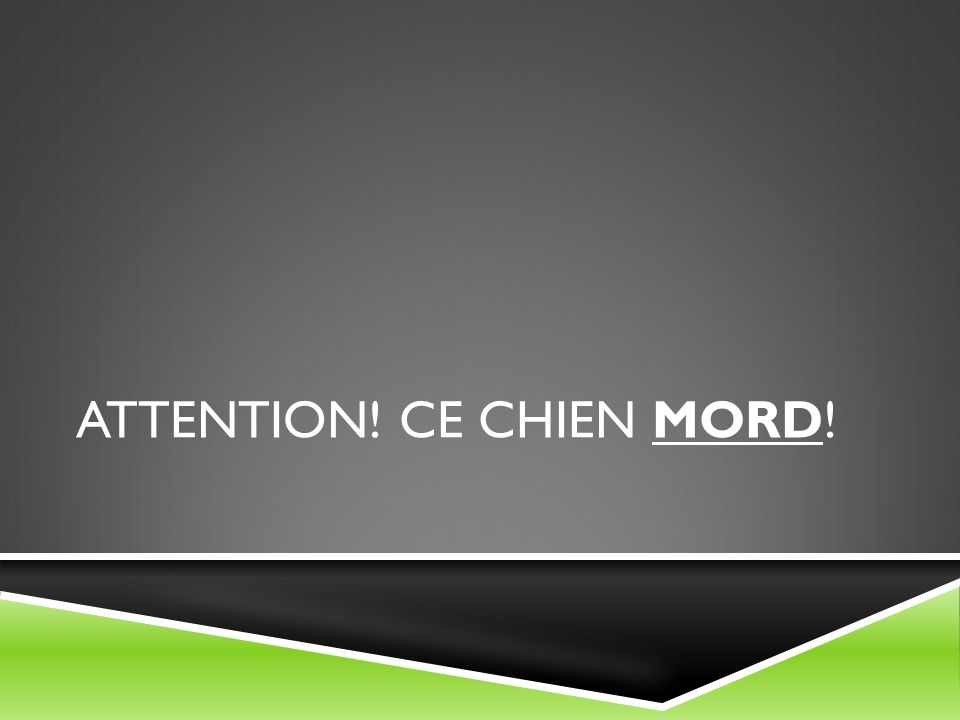Attention! Ce chien mord!