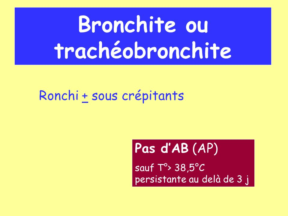 Bronchite ou trachéobronchite