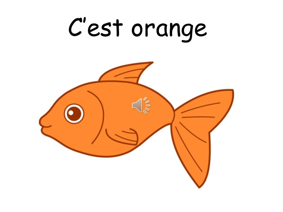 C'est orange Note that you pronounce the T on the end of C'est when it's followed by a vowel!