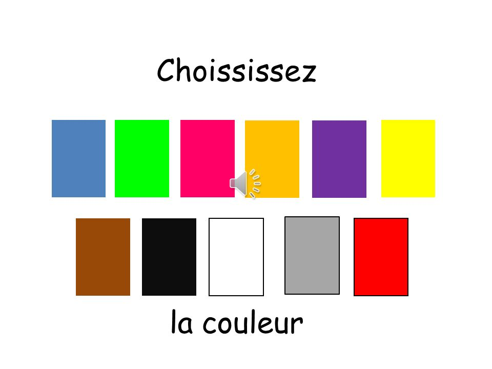 Choississez Choississez means choose la couleur